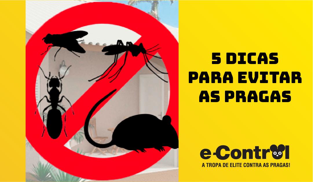 5 dicas para evitar as pragas